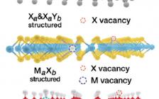 北京化工大学Adv. Energy Mater.综述:用于可持续能源应用的超薄2D纳米材料中的空位
