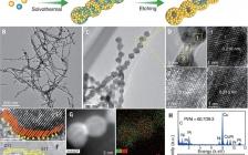 燃料电池最新Science:束状Pt-Ni合金纳米笼继续提升高效ORR性能