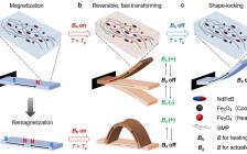 俄亥俄州立大学&佐治亚理工学院 Adv. Mater.: 形状记忆与快速形变的完美结合 – 磁驱形状记忆高分子材料