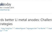 中科院化学所郭玉国研究员&马普所Joachim Maier教授Materials Today: 迈向更好的锂金属电池:挑战与策略
