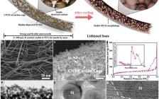 Energy Environ. Sci.:用于锂离子电池无粘结剂高硅含量柔性负极