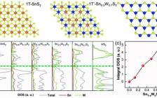 湖南大学Adv. Funct. Mater. :模板辅助合成用于析氢反应的金属1T'-Sn0.3W0.7S2纳米纳米片