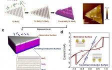 清华大学刘锴ACS Nano 应用于横向和垂直电子器件的双功能NbS2基非对称异质结