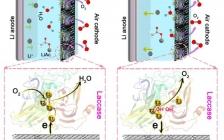 南京大学周豪慎教授团队和朱俊杰、张剑荣教授团队Energy Environ. Sci.:双功能生物酶作为可充电锂空气电池的高效催化剂