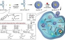 湖大谭蔚泓院士团队JACS: 利用生物正交化学和前药设计构筑新型癌症化学动力治疗新策略
