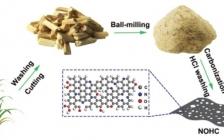 Adv. Sci. 高粱秸秆制备环境友好的高性能N/O双掺杂硬碳钾离子电池负极材料