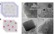 浙江大学今日Science:在甲烷氧化制甲醇过程中原位形成过氧化物的疏水沸石改性