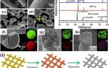 中南大学纪效波EnSM:通过在具有亲锂相的分级框架中调控成核方式实现无枝晶锂金属负极