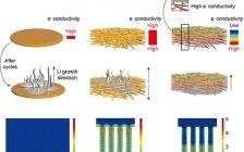 韩国蔚山国立科学技术大学AFM:电导梯度助力高性能锂金属负极