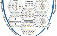 乔世璋&赵乃勤EES综述:过渡金属硫族化合物用于碱金属离子电池:原子层面的工程策略