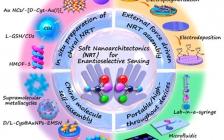 迪肯大学杨文荣团队Acc. Chem. Res.:基于软纳米构建技术为基础的手性生物传感