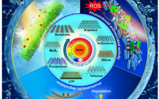 深圳大学张晗教授团队Solar RRL综述:基于新兴的二维材料的太阳能水净化技术—-现状与挑战
