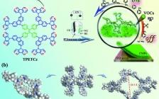 东北林大&哈工大团队AFM:用于高灵敏度和高选择性挥发性有机化合物传感器阵列的树枝状大分子基高发光共轭微孔聚合物薄膜