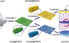 河北工业大学AFM:双管齐下!高性能柔性Li-S电池结构设计