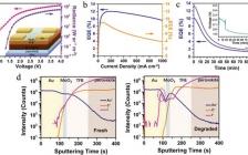 Adv. Mater.: 双碱金属离子掺杂稳定钙钛矿发光二极管
