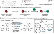 不对称催化最新Science:手性阳离子对映选择性远端C-H活化