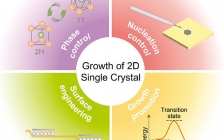 北大Adv. Mater:大尺寸二维单晶的设计生长