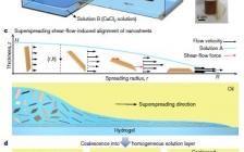 北航最新Nature: 高性能层状纳米复合材料