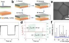 暨南大学唐群委Nano Energy:通过构建钙钛矿/金属肖特基结增强纳米发电机的机械能捕获效率