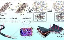 天津大学钟澄团队Adv. Mater.:由高保水性凝胶电解质与反应改性剂组成的高能量、长寿命的可充电锌空气电池