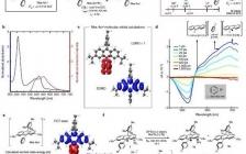 最新Nature: 探索新型自由基光还原剂