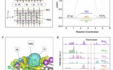 Nano Energy:Pt-N配位结构中电荷重新分布促进析氢反应