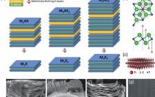 电子科技大学巫江Adv. Funct. Mater.:二维MXene用于光探测的最新进展