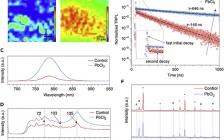 四川大学最新Joule:兼具低非辐射复合和局部载流子传输损耗的高效钙钛矿太阳能电池组件