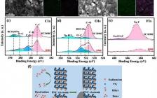 福建师范大学Nano Energy:打破纳米结构碳负极储钠的局限性