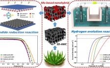 Appl Catal B-Environ:应用于新一代太阳能电池和电解水析氢的双功能催化剂