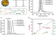 苏州大学&UIUC:通过N-羧基环内酸酐的快速聚合制备聚多肽单分子胶束