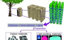 东北林业大学最新Adv. Mater.综述:木材衍生的碳材料和发光材料