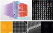 南京大学最新Science:基于超透镜阵列的高维多光子量子源