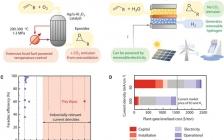 加拿大Edward H. Sargent院士最新Science:高电流密度下氯离子介导选择性电合成环氧乙烷和环氧丙烷
