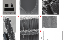 【NS精读】金属基底焕生的碳纳米管
