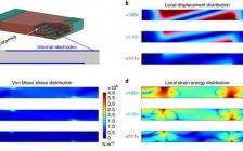 西安交大&哈工大&伍伦贡大学Nature Materials:晶粒定向工程的多层陶瓷电容器助力于储能应用