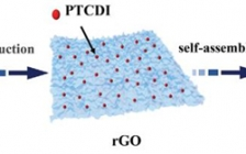 哈尔滨工业大学Adv. Sci.:高倍率和超稳定的无枝晶有机负极在水系锌离子电池中的应用