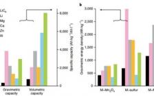 休斯敦大学姚彦Nature Energy:多价金属离子电池现状和未来方向
