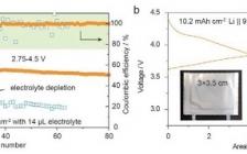 天大罗加严等人 AFM:利用固体电解质界面稳定具有高容量、高锂利用率、贫电解质的高压锂金属电池的负/正极