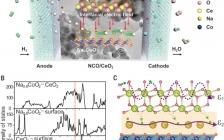 燃料电池最新Science:半导体异质结构中场致金属态实现的质子传输