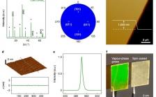 加州大学洛杉矶分校段镶锋Nat. Nanotech.:用范德华接触探测卤化物钙钛矿中的光电输运