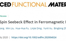 三峡大学Adv. Funct. Mater.:自旋热输运基础理论研究进展