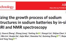 跟着顶刊学测试|最新Nat. Nanotech.:MRI/NMR技术助力钠电池中的微结构可视化