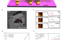 Nanoscale:基于各向异性ReS2的多位闪存设计