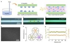 Nature Nanotechnology:二维材料复合光纤获得超高非线性