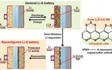 ACS Nano:过锂化重构有机硫正极助力超厚锂金属负极的锂硫电池