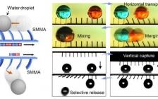中科大 Nano Letters:飞秒激光直写和柔性转印制造的3D多功能磁响应液体操纵器