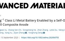跟着顶刊学测试|南科大Adv. Mater:原位透射电镜揭示液态锂金属负极的成核过程