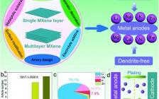 山东大学冯金奎副教授AFM综述:浅谈MXene在电池负极材料中的最新进展