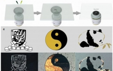 香港中文大学Nature Commun.:一种具有普适性的的原位沉积图案化材料的方法
